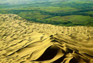 中企为摩洛哥提供生态治沙经验
