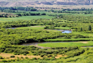 草原铺翡翠 瀚海生黄金——内蒙古着力构筑北疆万里绿色长城