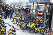 共享单车都去哪儿了?