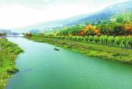 聚力守护绿水青山