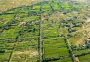 60年治理 陕西榆林860万亩流沙重披绿装