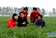 中国农大师生扎根田野书写奉献之歌