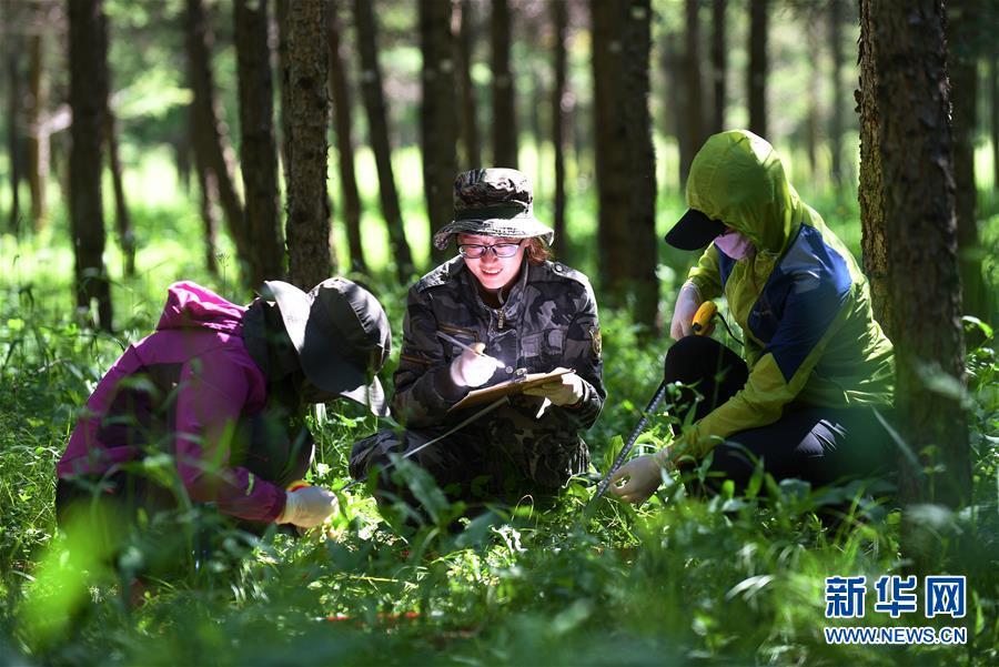(权威访谈·聚焦中国经济亮点·图文互动)(8)防治土地荒漠化 推动绿色发展——专访国家林业和草原局副局长刘东生