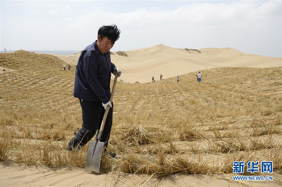 (权威访谈·聚焦中国经济亮点·图文互动)(9)防治土地荒漠化 推动绿色发展——专访国家林业和草原局副局长刘东生