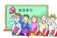 """南京市高淳区:实施""""三大模式""""提升支部组织力"""