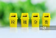 垃圾分类实施月余 上海这座城有哪些变化