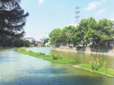生态治水的莆田探索:因地制宜 呵护木兰溪水质