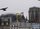 脚手架成巴黎圣母院重建隐患 或危及教堂三个拱顶