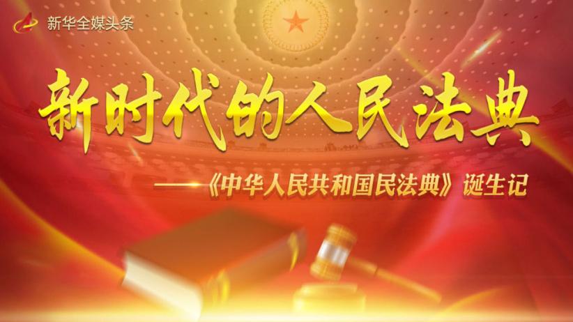 《中华人民共和国民法典》诞生记