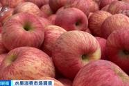 賣1斤虧1元!蘋果價格大跌滯銷!遭歷史最嚴重行情?