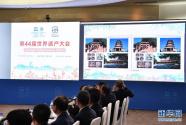 """""""泉州:宋元中國的世界海洋商貿中心""""躋身世界遺產"""